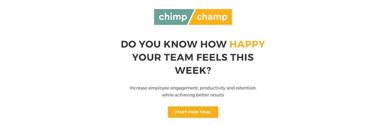 phần mềm làm việc từ xa Chimp or Champ